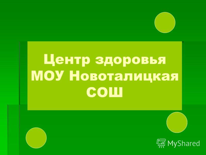 Центр здоровья МОУ Новоталицкая СОШ