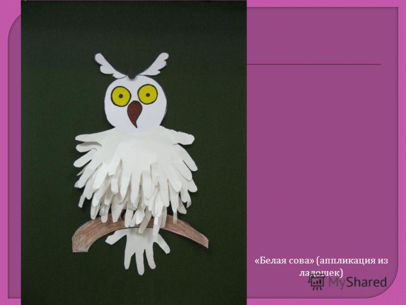 « Белая сова » ( аппликация из ладошек )