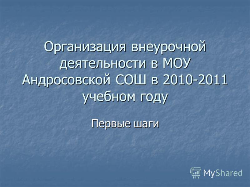 Организация внеурочной деятельности в МОУ Андросовской СОШ в 2010-2011 учебном году Первые шаги