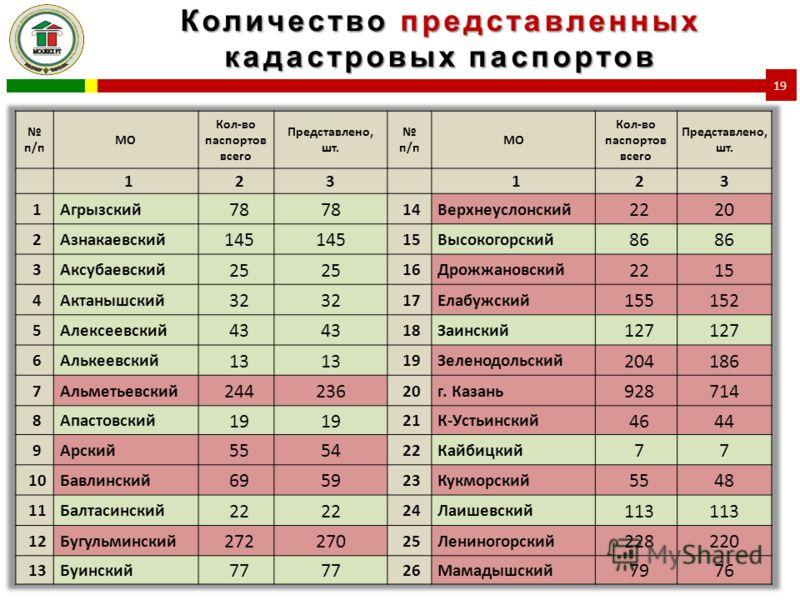 Количество представленных кадастровых паспортов 19