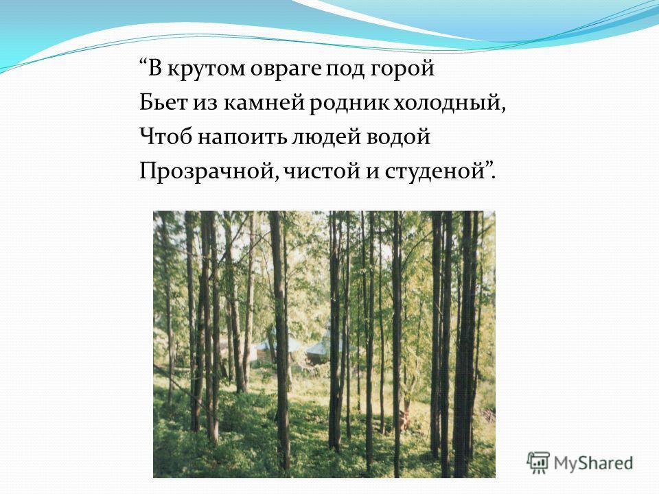 В крутом овраге под горой Бьет из камней родник холодный, Чтоб напоить людей водой Прозрачной, чистой и студеной.