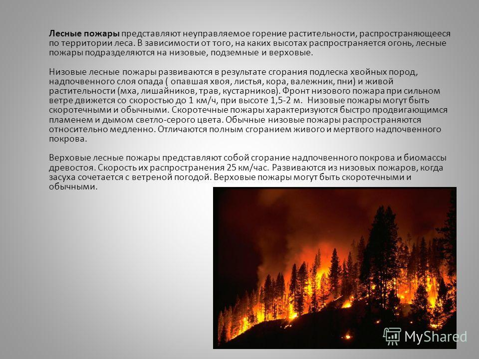 Лесные пожары представляют неуправляемое горение растительности, распространяющееся по территории леса. В зависимости от того, на каких высотах распространяется огонь, лесные пожары подразделяются на низовые, подземные и верховые. Низовые лесные пожа