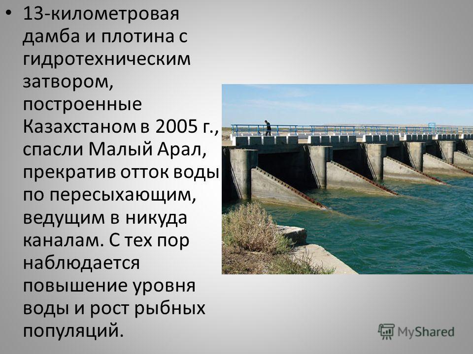 13-километровая дамба и плотина с гидротехническим затвором, построенные Казахстаном в 2005 г., спасли Малый Арал, прекратив отток воды по пересыхающим, ведущим в никуда каналам. С тех пор наблюдается повышение уровня воды и рост рыбных популяций.