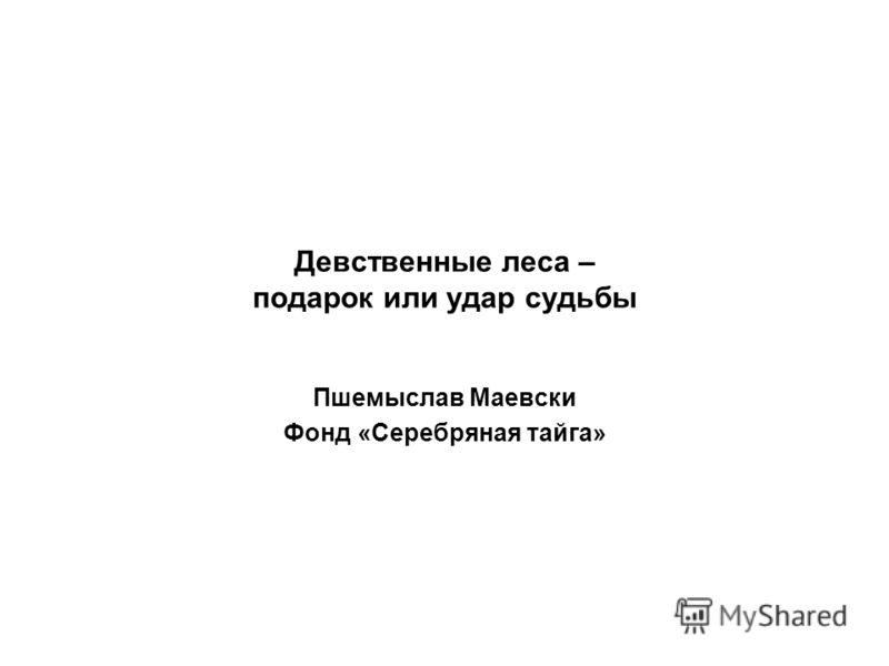 Девственные леса – подарок или удар судьбы Пшемыслав Маевски Фонд «Серебряная тайга»