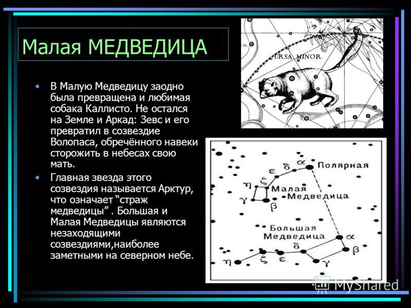 Малая МЕДВЕДИЦА В Малую Медведицу заодно была превращена и любимая собака Каллисто. Не остался на Земле и Аркад: Зевс и его превратил в созвездие Волопаса, обречённого навеки сторожить в небесах свою мать. Главная звезда этого созвездия называется Ар