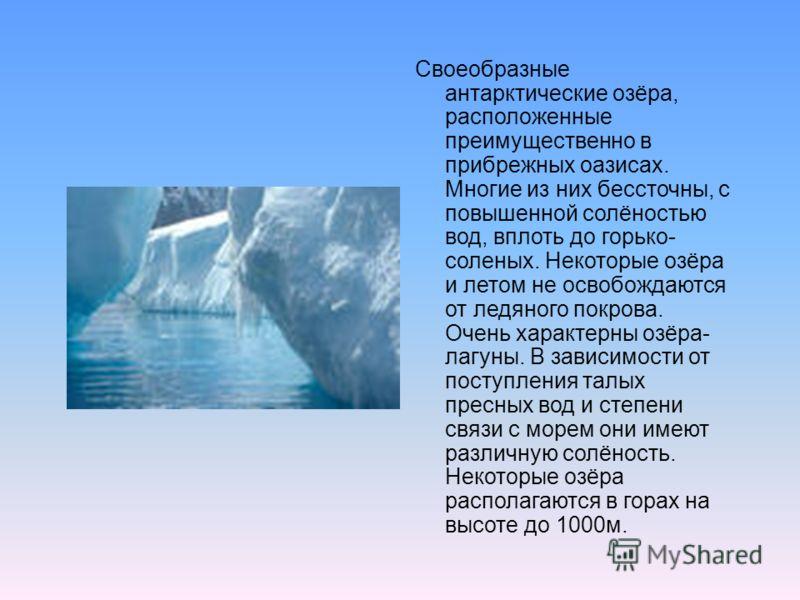 Своеобразные антарктические озёра, расположенные преимущественно в прибрежных оазисах. Многие из них бессточны, с повышенной солёностью вод, вплоть до горько- соленых. Некоторые озёра и летом не освобождаются от ледяного покрова. Очень характерны озё
