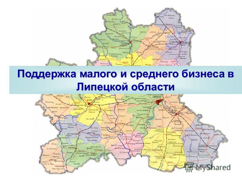 Поддержка малого и среднего бизнеса в Липецкой области
