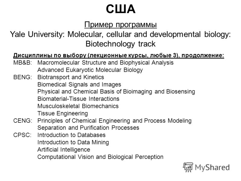 США Пример программы Yale University: Molecular, cellular and developmental biology: Biotechnology track Дисциплины по выбору (лекционные курсы, любые 3), продолжение: MB&B:Macromolecular Structure and Biophysical Analysis Advanced Eukaryotic Molecul