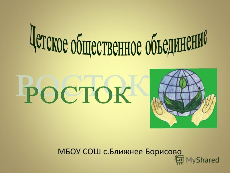 МБОУ СОШ с.Ближнее Борисово