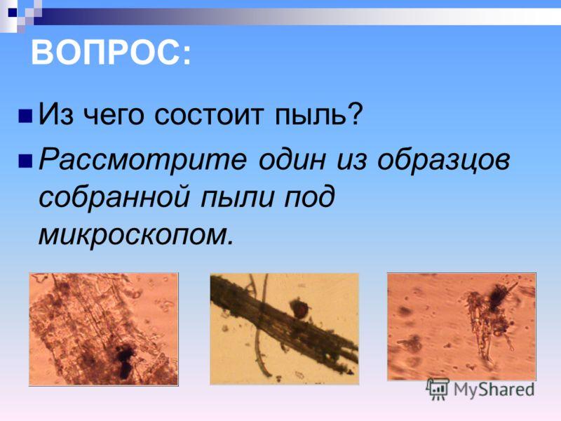 ВОПРОС: Из чего состоит пыль? Рассмотрите один из образцов собранной пыли под микроскопом.