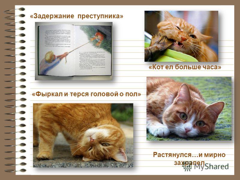 Заброшенный дом Никому не нужный кот когда кот «досаждал» когда нужно было переночевать О них вспоминали шумел отвечал воровством и разбоем на безразличие к себе