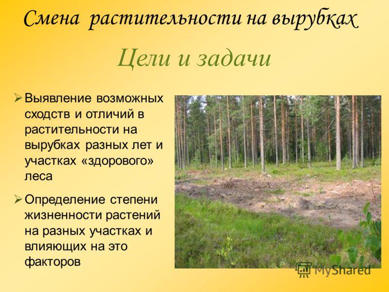Смена растительности на вырубках Цели и задачи Выявление возможных сходств и отличий в растительности на вырубках разных лет и участках «здорового» леса Определение степени жизненности растений на разных участках и влияющих на это факторов