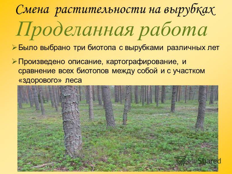 Смена растительности на вырубках Проделанная работа Было выбрано три биотопа с вырубками различных лет Произведено описание, картографирование, и сравнение всех биотопов между собой и с участком «здорового» леса