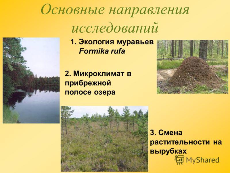 Основные направления исследований 1. Экология муравьев Formika rufa 2. Микроклимат в прибрежной полосе озера 3. Смена растительности на вырубках