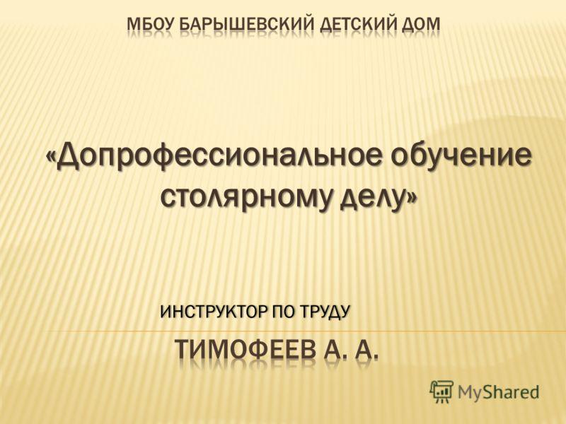 «Допрофессиональное обучение столярному делу» ИНСТРУКТОР ПО ТРУДУИНСТРУКТОР ПО ТРУДУ