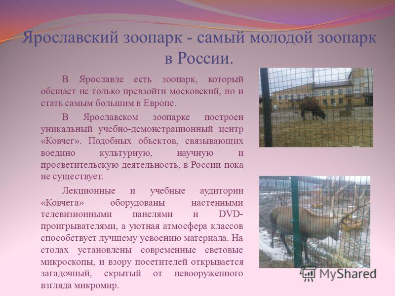 Ярославский зоопарк - самый молодой зоопарк в России. В Ярославле есть зоопарк, который обещает не только превзойти московский, но и стать самым большим в Европе. В Ярославском зоопарке построен уникальный учебно-демонстрационный центр «Ковчег». Подо