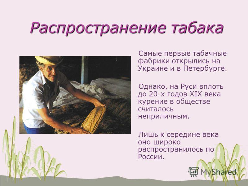 Распространение табака Распространение табака Самые первые табачные фабрики открылись на Украине и в Петербурге. Однако, на Руси вплоть до 20-х годов XIX века курение в обществе считалось неприличным. Лишь к середине века оно широко распространилось