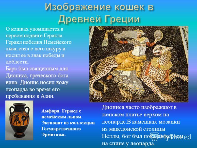 О кошках упоминается в первом подвиге Геракла. Геракл победил Немейского льва, снял с него шкуру и носил ее в знак победы и доблести. Барс был священным для Диониса, греческого бога вина. Дионис носил кожу леопарда во время его пребывания в Азии. Дио