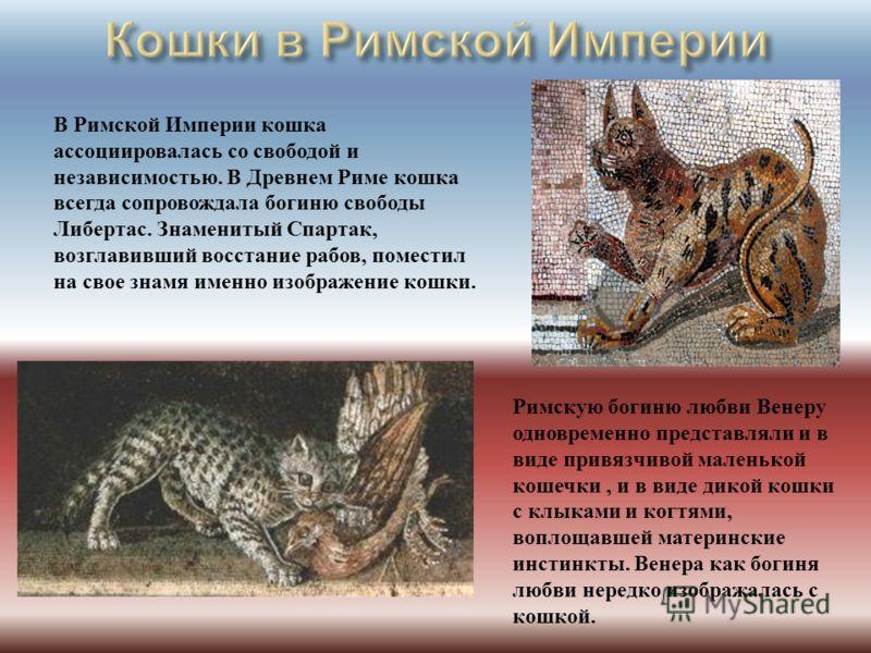 В Римской Империи кошка ассоциировалась со свободой и независимостью. В Древнем Риме кошка всегда сопровождала богиню свободы Либертас. Знаменитый Спартак, возглавивший восстание рабов, поместил на свое знамя именно изображение кошки. Римскую богиню