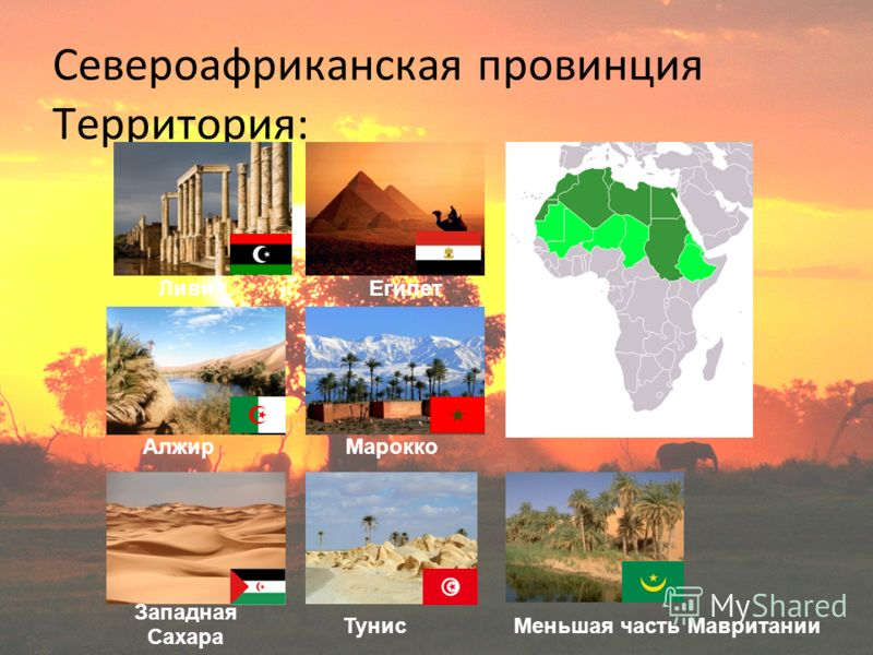 Североафриканская провинция Территория: ЛивияЕгипет Тунис АлжирМарокко Западная Сахара Меньшая часть Мавритании