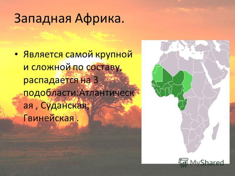 Западная Африка. Является самой крупной и сложной по составу, распадается на 3 подобласти:Атлантическ ая, Суданская, Гвинейская.