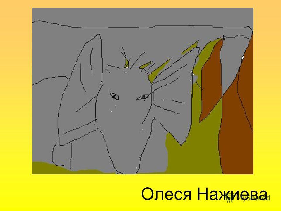 Олеся Нажиева