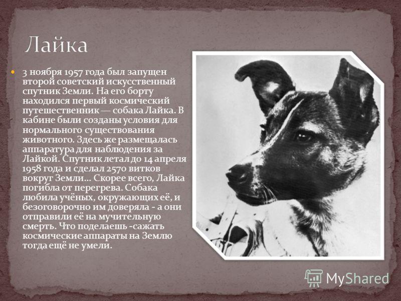 3 ноября 1957 года был запущен второй советский искусственный спутник Земли. На его борту находился первый космический путешественник собака Лайка. В кабине были созданы условия для нормального существования животного. Здесь же размещалась аппаратура