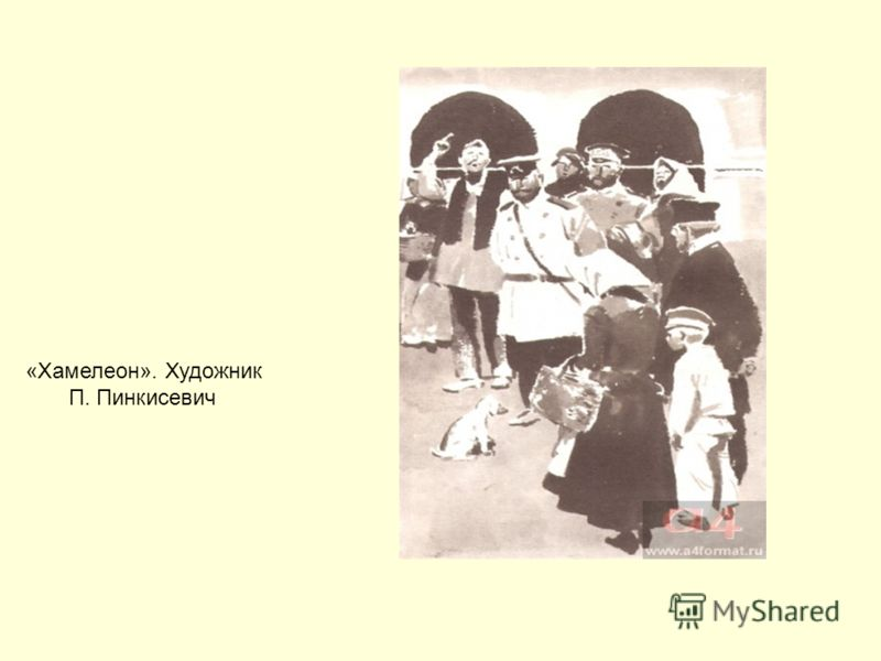 «Хамелеон». Художник П. Пинкисевич