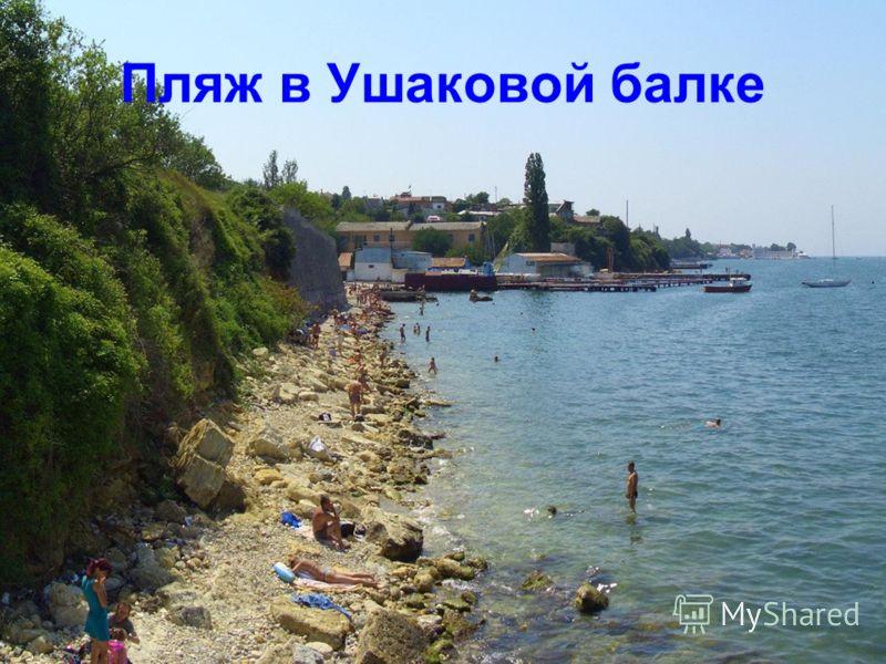 Пляж в Ушаковой балке