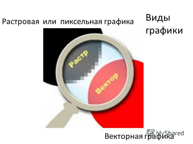 Виды графики Растровая или пиксельная графика Векторная графика