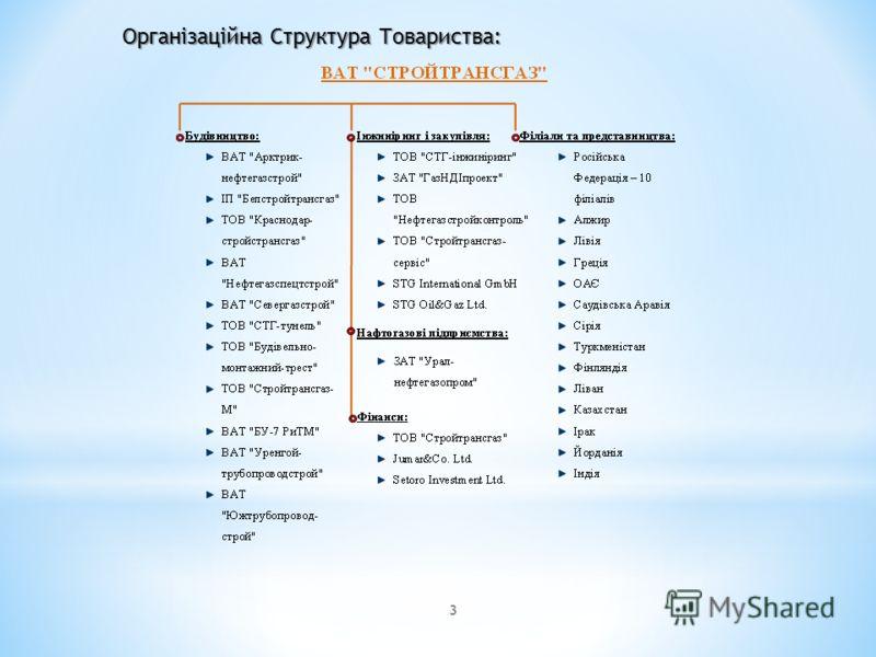 Організаційна Структура Товариства: 3