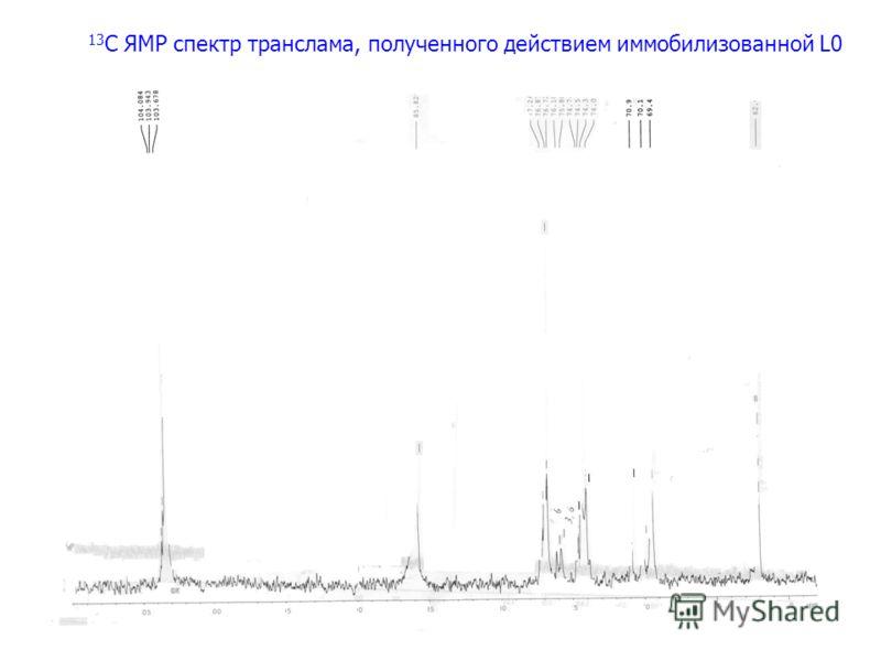 13 С ЯМР спектр транслама, полученного действием иммобилизованной L0