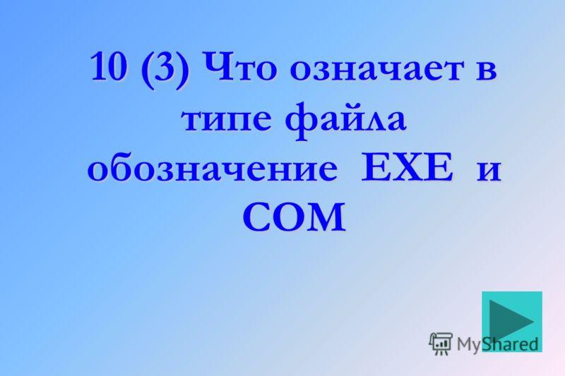 10 (3) Что означает в типе файла обозначение EXE и COM