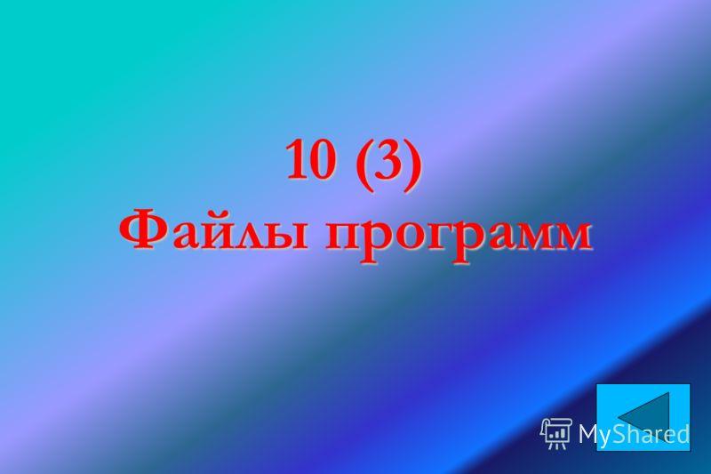 10 (3) Файлы программ