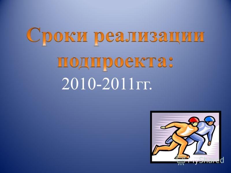 2010-2011гг.