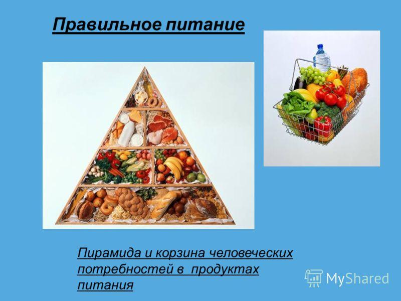 Правильное питание Пирамида и корзина человеческих потребностей в продуктах питания
