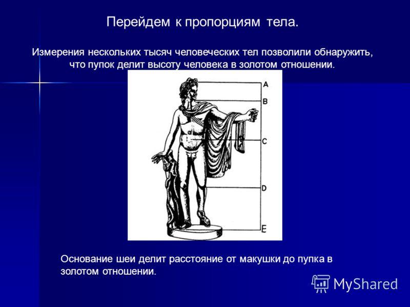 Человек – венец творения природы… Установлено, что золотые отношения можно найти и в пропорциях человеческого тела. Кроме того, человек сам является творцом, создаёт замечательные произведения искусства, в которых просматривается золотая пропорция. О