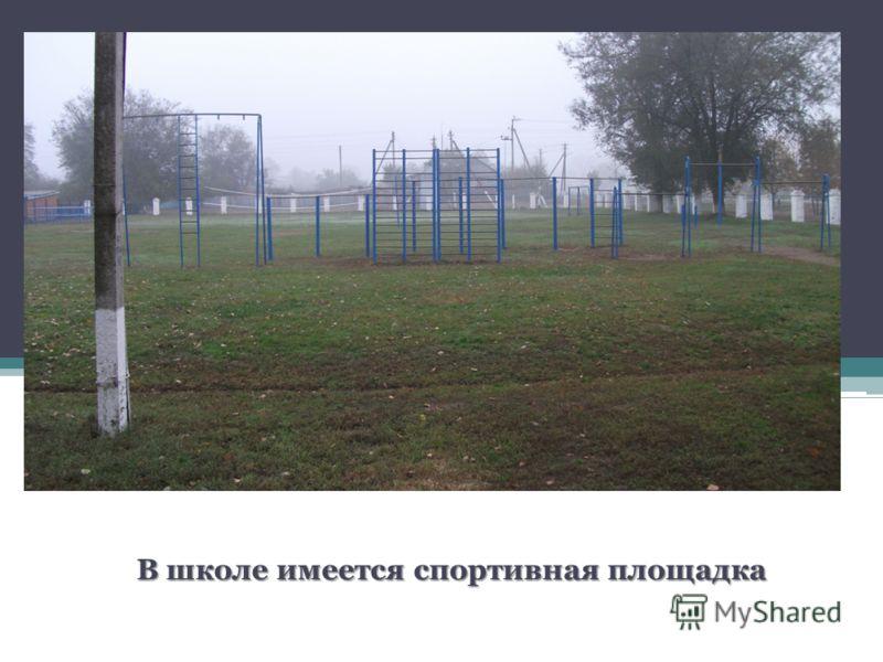 В школе имеется спортивная площадка