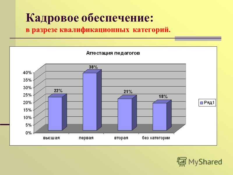 Кадровое обеспечение: в разрезе квалификационных категорий.