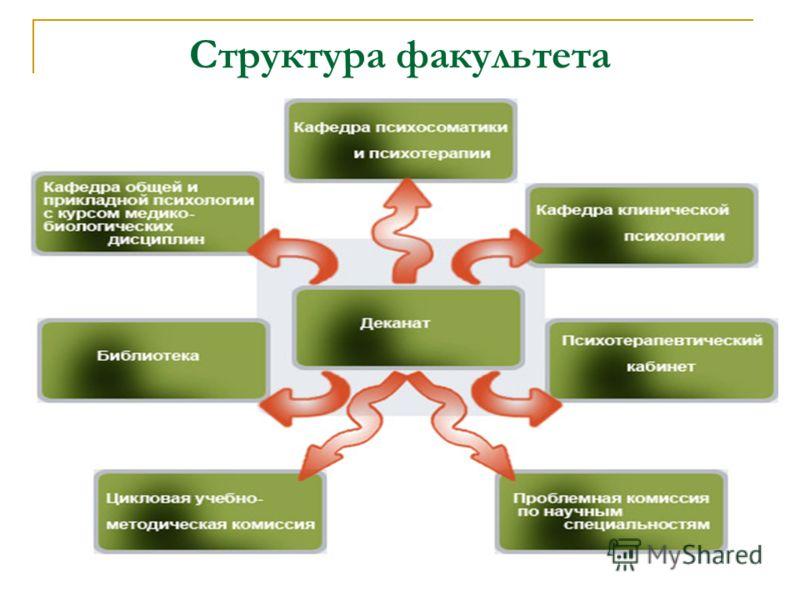 Структура факультета