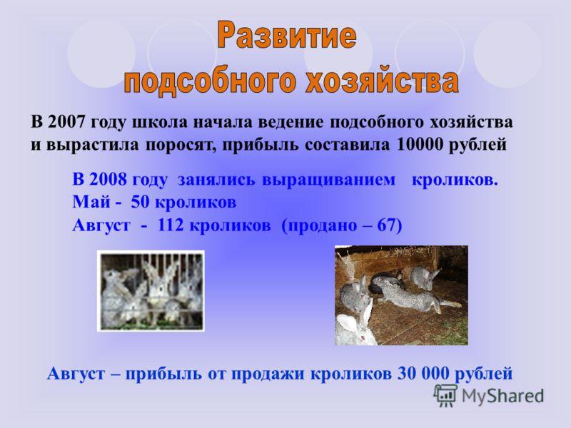 В 2007 году школа начала ведение подсобного хозяйства и вырастила поросят, прибыль составила 10000 рублей В 2008 году занялись выращиванием кроликов. Май - 50 кроликов Август - 112 кроликов (продано – 67) Август – прибыль от продажи кроликов 30 000 р