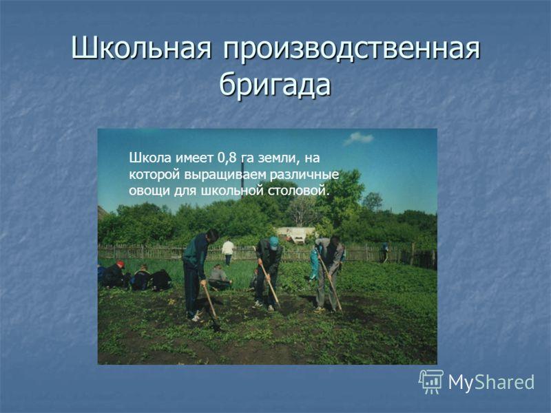 Школьная производственная бригада Школа имеет 0,8 га земли, на которой выращиваем различные овощи для школьной столовой.