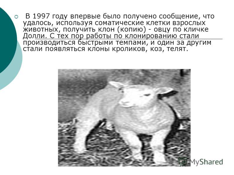 В 1997 году впервые было получено сообщение, что удалось, используя соматические клетки взрослых животных, получить клон (копию) - овцу по кличке Долли. С тех пор работы по клонированию стали производиться быстрыми темпами, и один за другим стали поя
