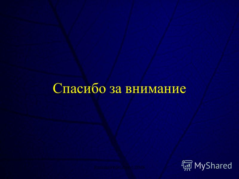 Russian Federation CDMS23 Спасибо за внимание