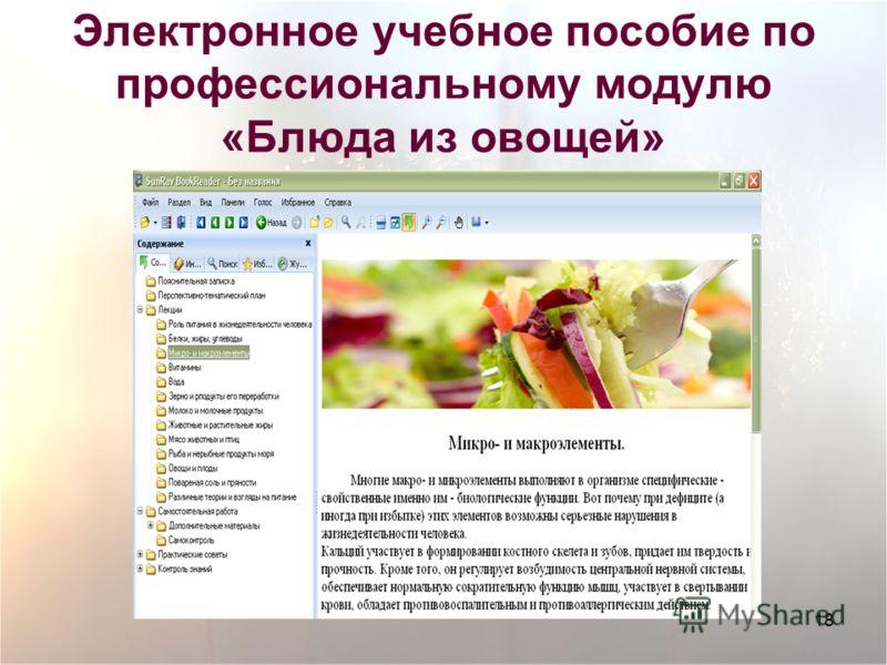 18 Электронное учебное пособие по профессиональному модулю «Блюда из овощей»