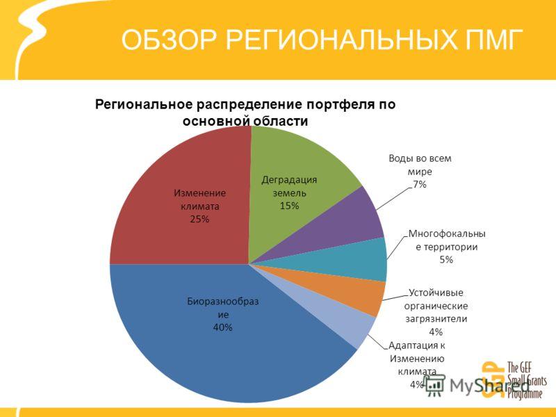 ОБЗОР РЕГИОНАЛЬНЫХ ПМГ Региональное распределение портфеля по основной области