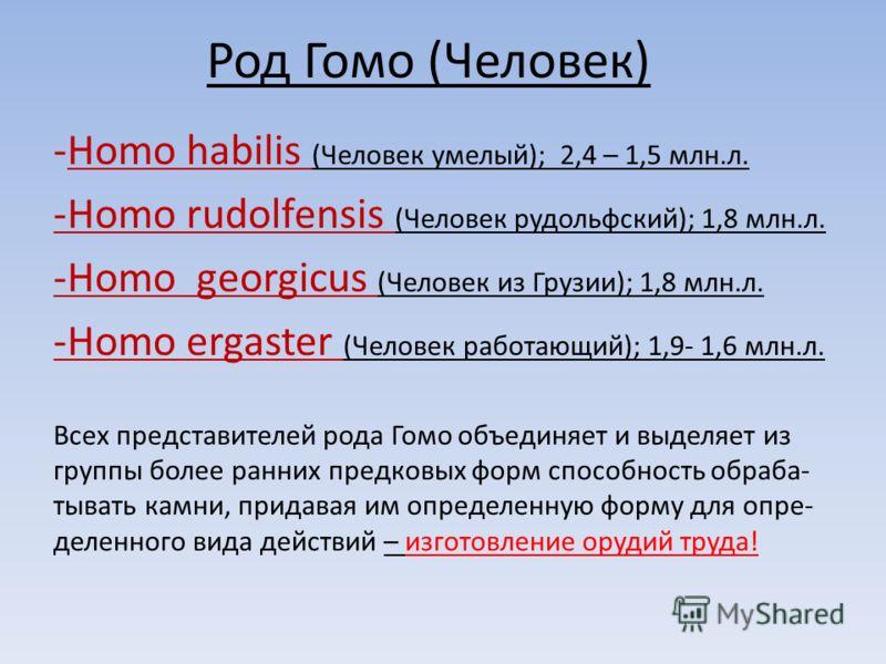 Род Гомо (Человек) -Homo habilis (Человек умелый); 2,4 – 1,5 млн.л. -Homo rudolfensis (Человек рудольфский); 1,8 млн.л. -Homo georgicus (Человек из Грузии); 1,8 млн.л. -Homo ergaster (Человек работающий); 1,9- 1,6 млн.л. Всех представителей рода Гомо