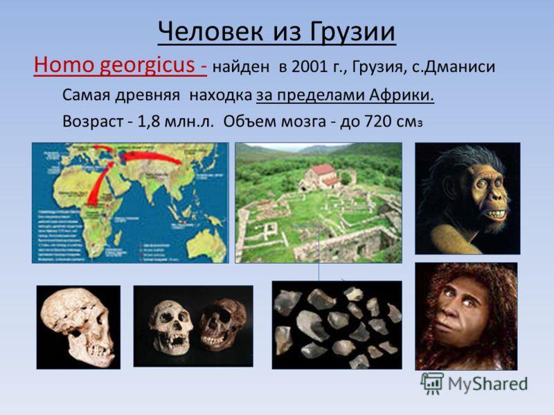 Человек из Грузии Homo georgicus - найден в 2001 г., Грузия, с.Дманиси Самая древняя находка за пределами Африки. Возраст - 1,8 млн.л. Объем мозга - до 720 см з