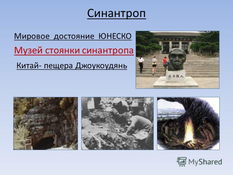 Синантроп Мировое достояние ЮНЕСКО Музей стоянки синантропа Китай- пещера Джоукоудянь