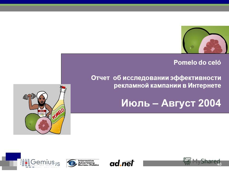 Pomelo do celó Отчет об исследовании эффективности рекламной кампании в Интернете Июль – Август 2004 43